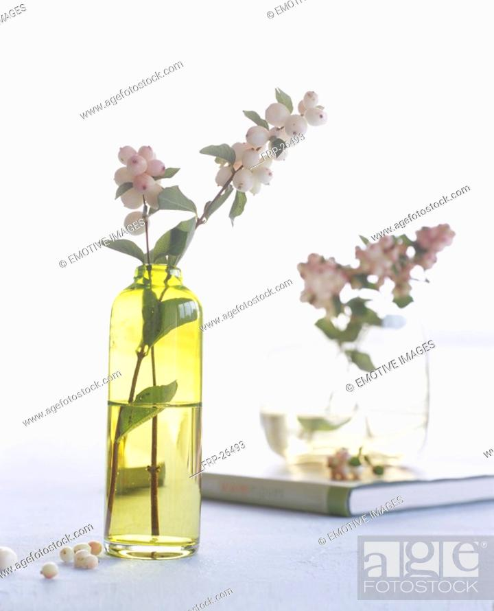 Stock Photo: Snowberry in a glas vase.