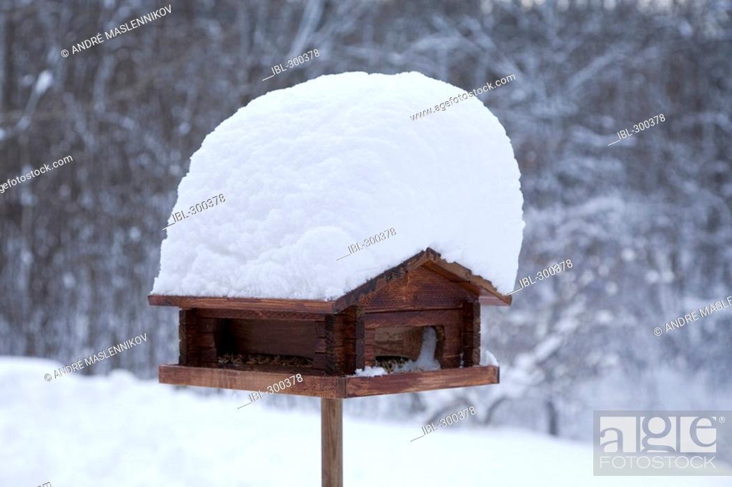 Stock Photo: Snow on bird-table.