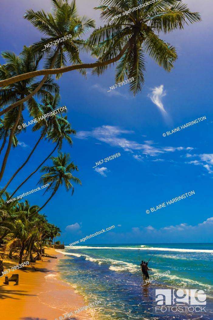 Stock Photo: Fishing, Akurala Beach, south coast of Sri Lanka.