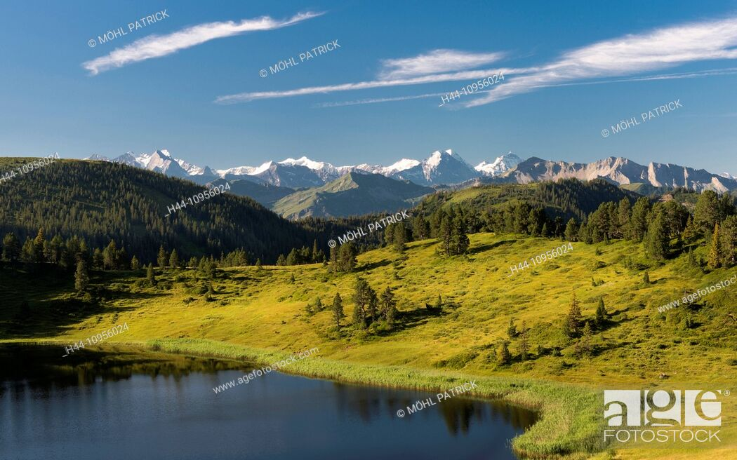 Imagen: Alpine panorama, August, view, mountain, mountaintop, Brienzer Rothorn, Eiger, spruce, Fiescherhorn, summit, peak, Jungfrau, monk, Mönch, Rosenhorn, Schreckhorn.