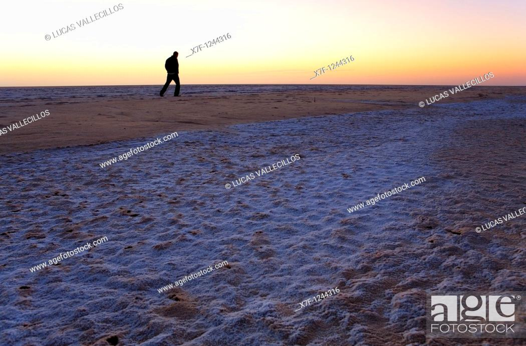 Stock Photo: Tunisia Chot el Jerid, the largest dry salt lake in Tunisia.