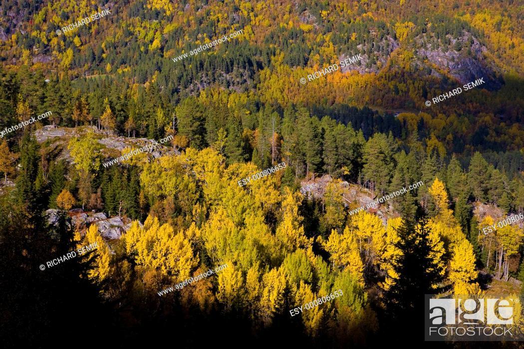 Stock Photo: landscape of Southern Vestlandet, Norway.