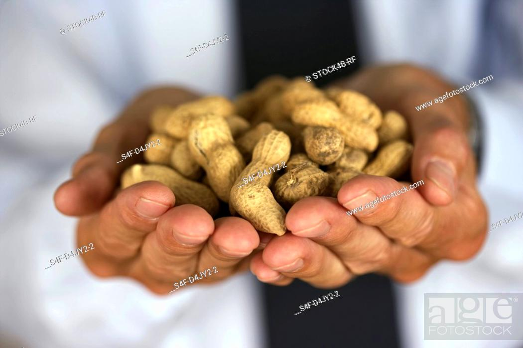 Stock Photo: Businessman holding peanuts.