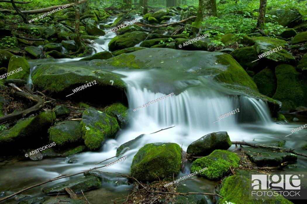 Stock Photo: Stream, Spring Landscape, Newfound Gap Rd, Great Smoky Mountains National Park, TN.