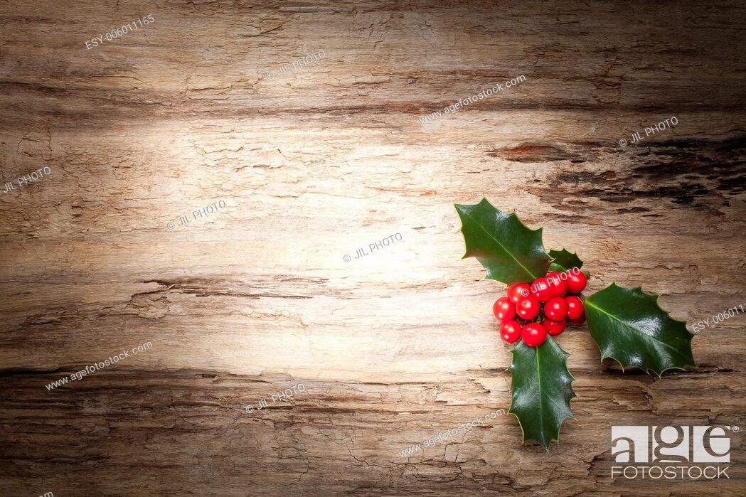 Stock Photo: Christmas holly on wooden background.