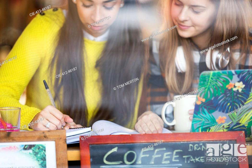 Stock Photo: Young female college students studying in cafe.