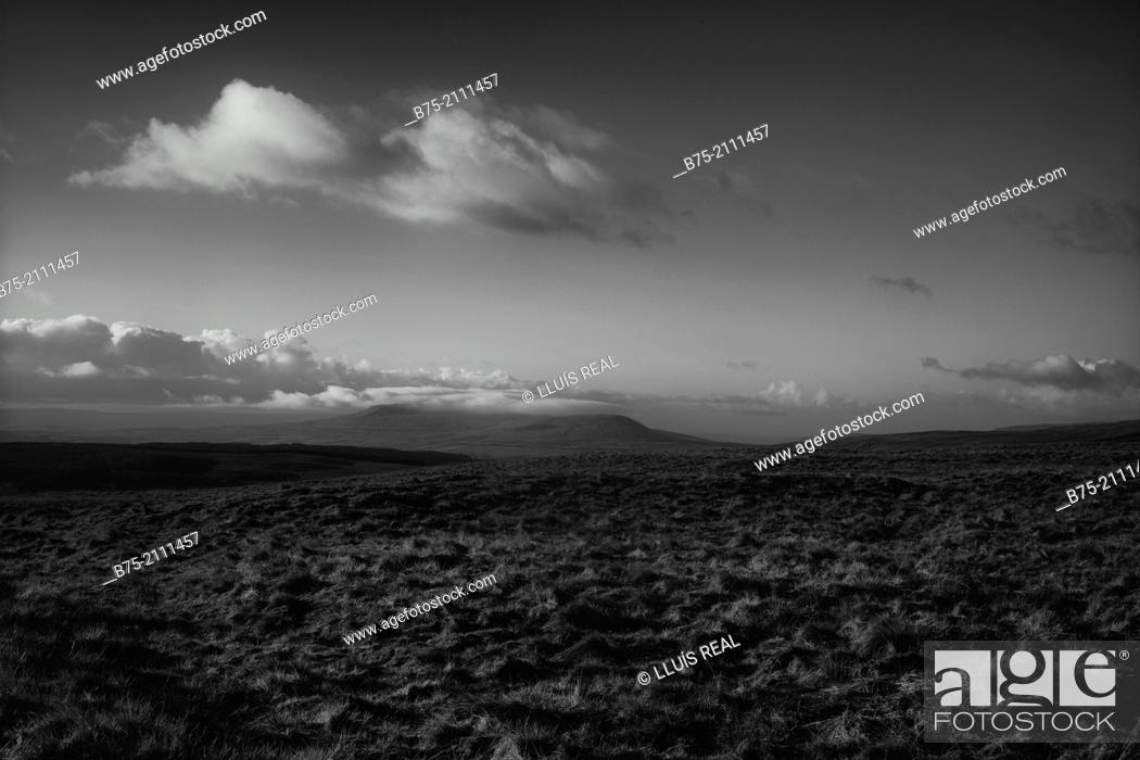 Stock Photo: Rural landscape on top of the hills of Yorkshire Dales, England, UK, Europe.