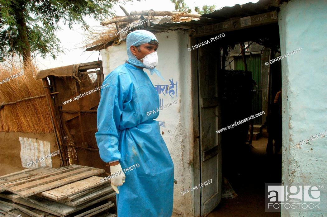 Stock Photo: Government health workers go house to house to cull  infected chickens in the backyard of the villager's houses at Hingona village in Jalgaon district as Bird.