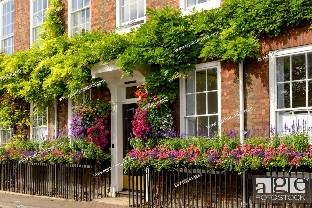 Stock Photo: flowers on bricks facade, Henley on Thames, blossoming flowers and greenery on old house brick facade, shot in touristic village on river Thames.