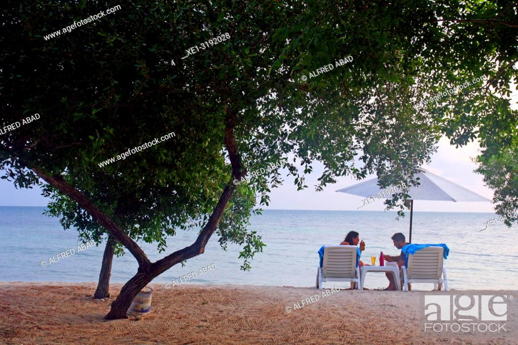 Imagen: trees and sunbathers on the beach, Barú Peninsula, Caribbean Sea, Colombia.