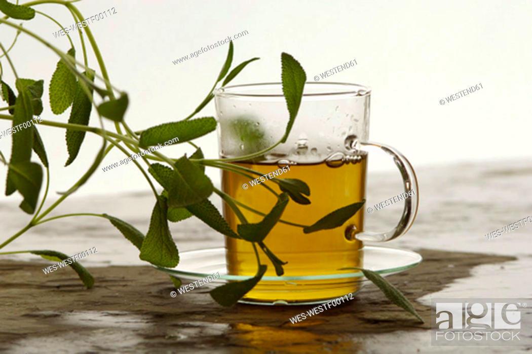 Stock Photo: Herbal tea with Salvia.