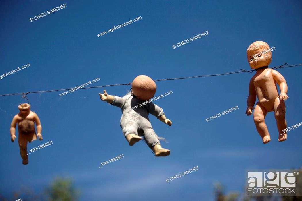 Stock Photo: Dolls hang on the Island of the Dolls in Xochimilco, southern Mexico City, December 28, 2012  The late Don Julian turned his 'chinampa.