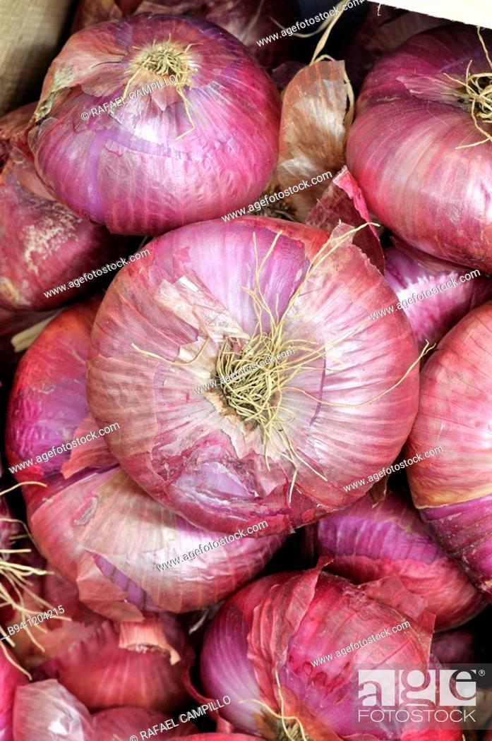 Stock Photo: Onions. Valcebollère market. Languedoc Roussillon. Pyrénées Orientales. France.