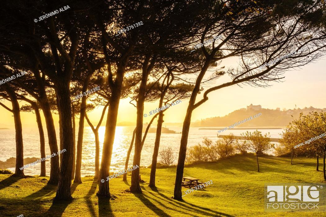 Stock Photo: Península de la Magdalena gardens. Santander, Cantabrian Sea, Cantabria, Northern Spain, Europe.