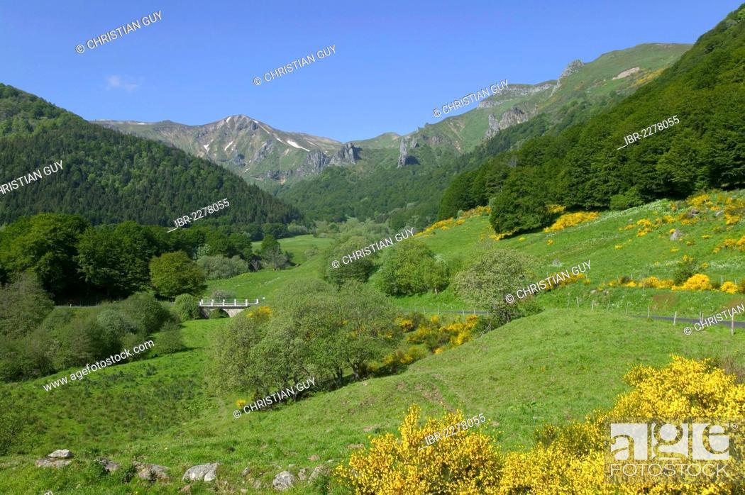 Stock Photo: Chaudefour Valley Natural Reserve, Sancy montain, Monts Dore, Auvergne Volcanoes Natural Park, Puy de Dome, Auvergne, France, Europe.