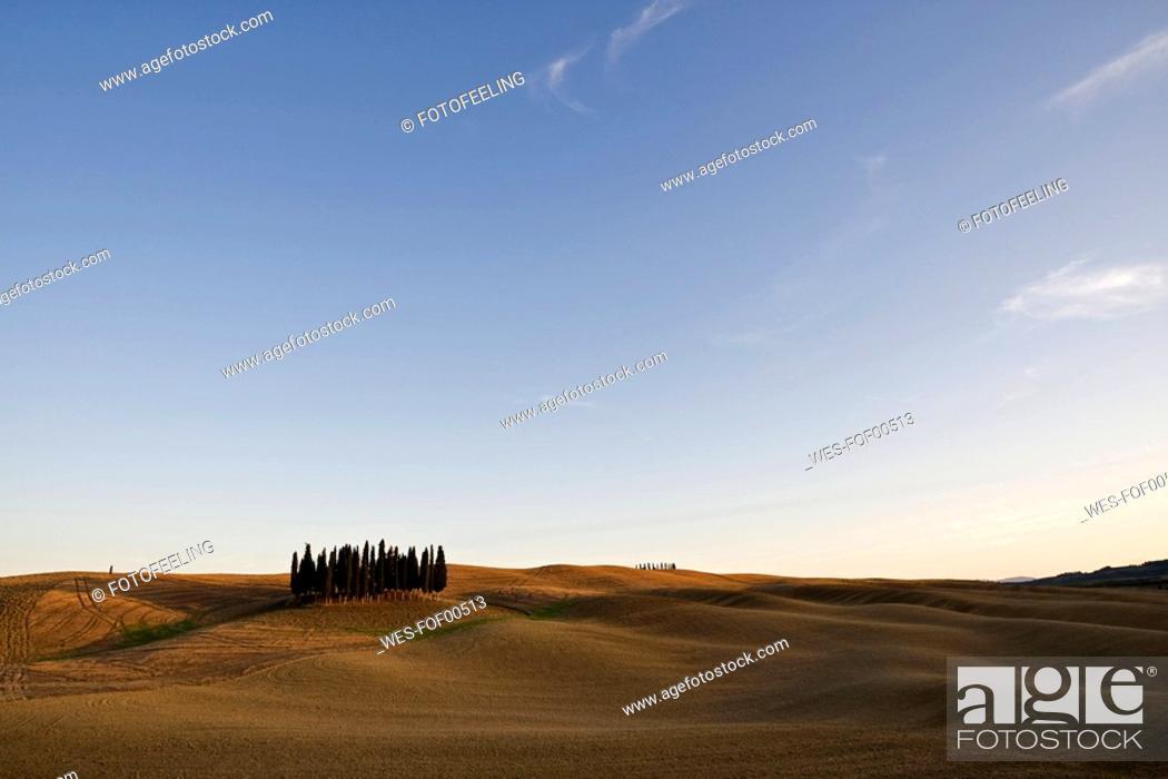 Stock Photo: Italy, Tuscany, Landscape.