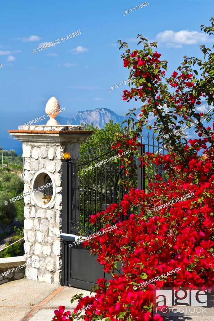 Stock Photo: Bougainvillea flowers and a stone gate near Massa Lubrense, Italy.