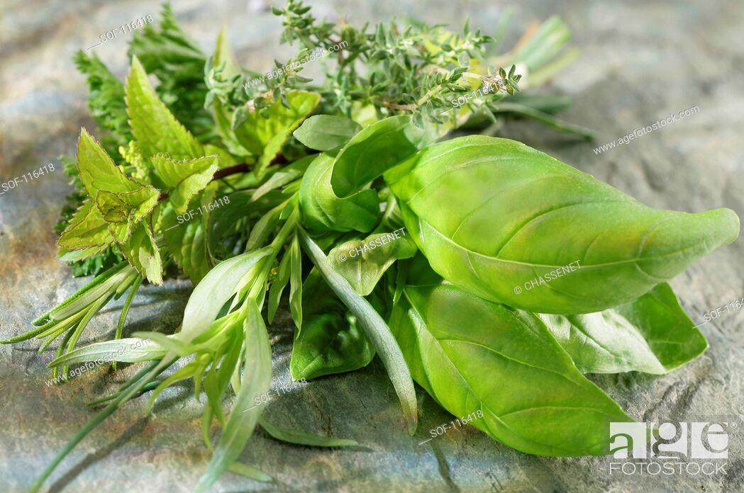 Stock Photo: Bunch of fresh herbs.