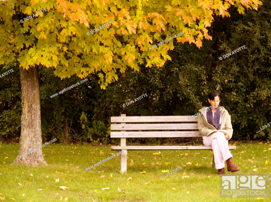 Stock Photo: Bench.