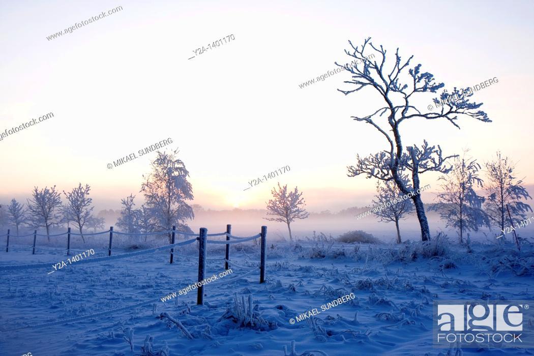 Stock Photo: Karlslund in Orebro winter 2, Sweden.