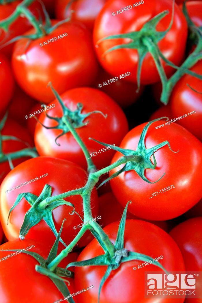 Stock Photo: ripe tomatoes, vegetable, food.
