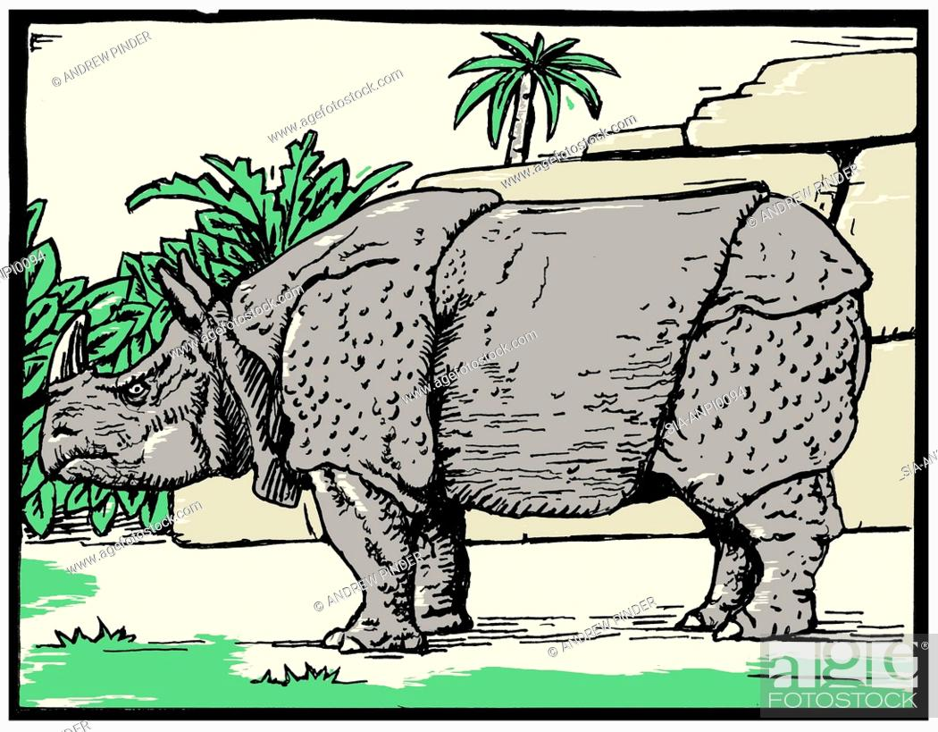 Imagen: Side view of grey rhinoceros outdoors.