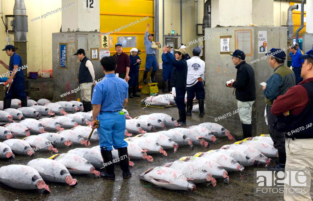 Stock Photo: Tuna auction under way at Tsukiji Wholesale Fish Market, the world's largest fish market in Tokyo, Japan, Asia.