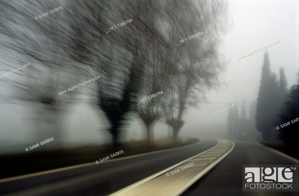 Stock Photo: Blurry bare trees visible through the fog seen from a speeding car, Carpentras, Provence, France.