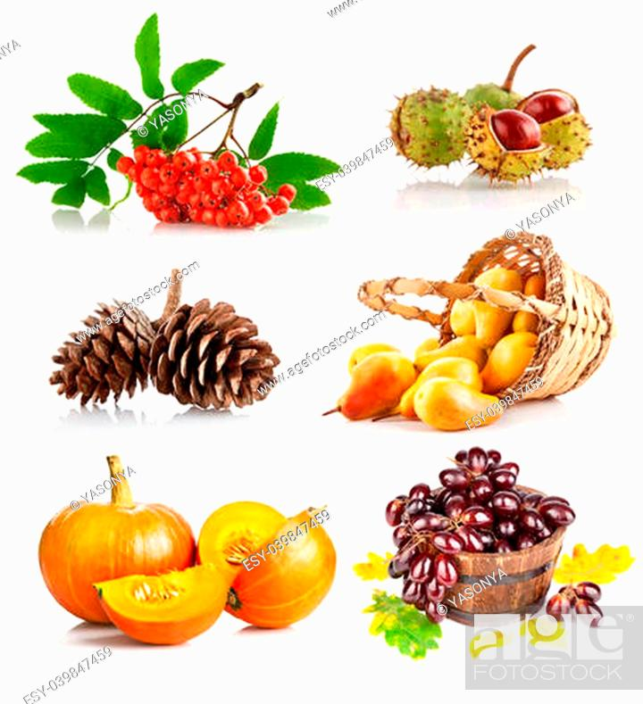 Stock Photo: set autumnal vegetable and fruit isolated on white background.