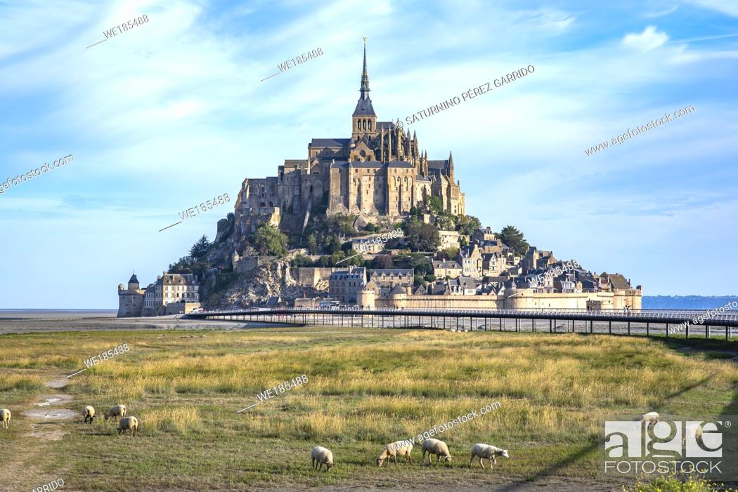 Stock Photo: Mont Saint Michel and the Abbey with the sea at low tide and obey grazing.