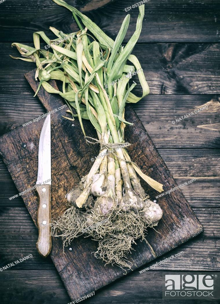 Stock Photo: bunch of fresh young garlic tied with a rope on a brown wooden board, top view, vintage toning.