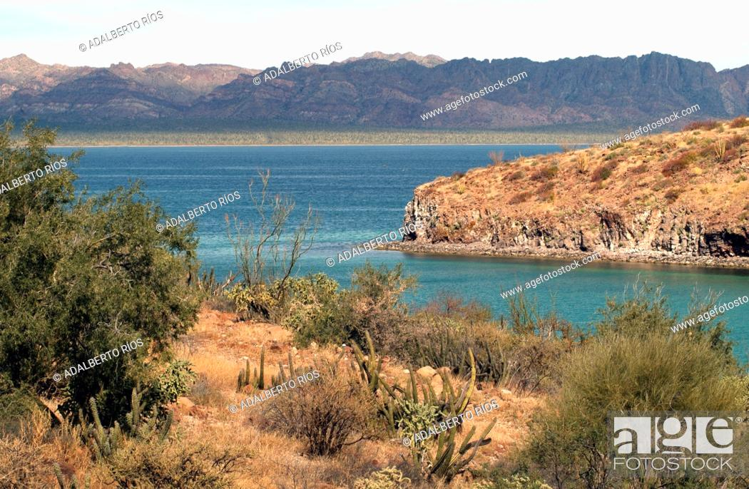 Stock Photo: At Bahia Concepcion in Baja California Sur meets a series of white beaches and crystal clear waters with the strong presence of the neighboring mountain.