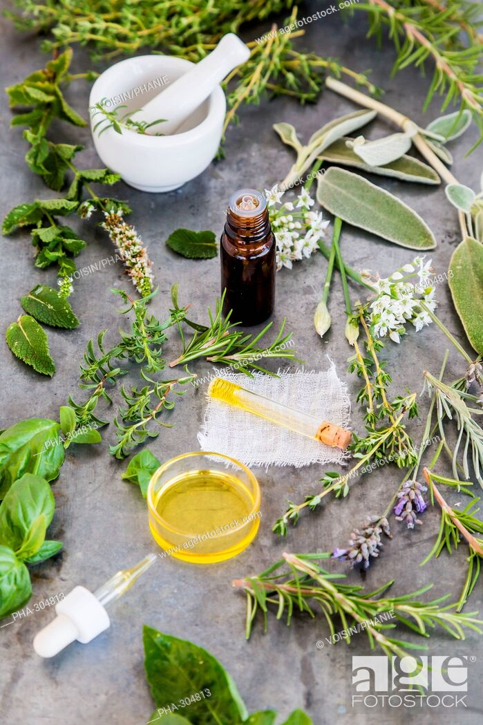 Imagen: Assortment of herbs used fot essential oils .