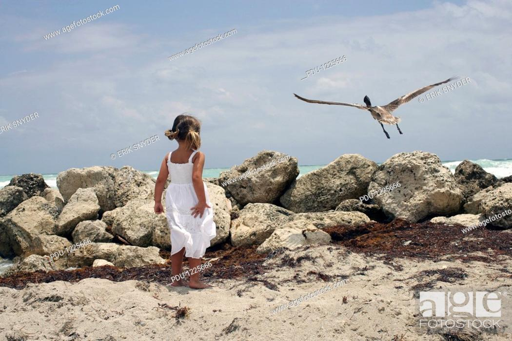 Stock Photo: Girl 4-5 standing on seashore, looking at bird taking off, rear view.