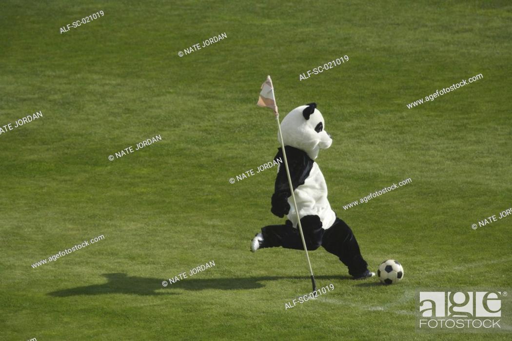 Stock Photo: Panda Playing Football.