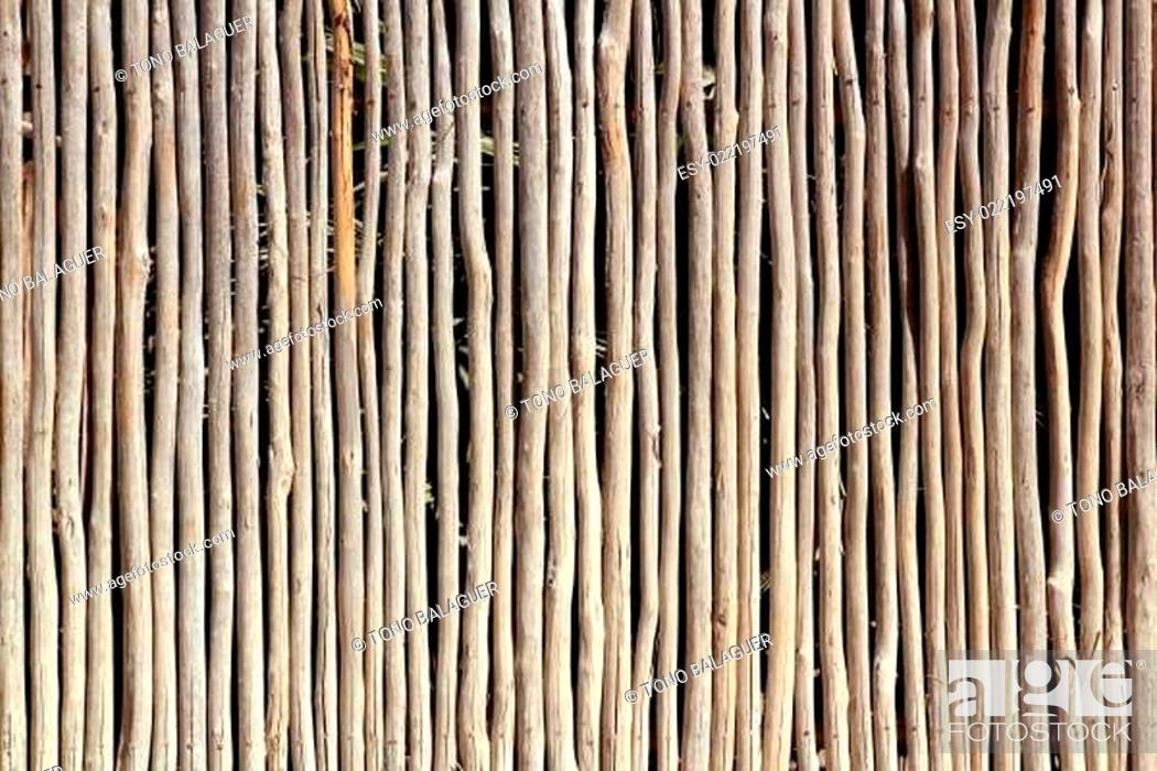 Stock Photo: stick white wood trunk fence tropical Mayan wall.