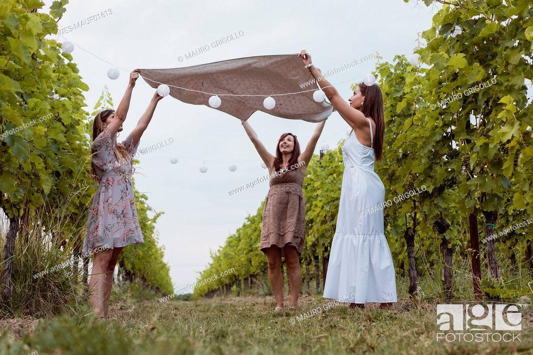 Stock Photo: Friends spreading picnic blanket in decorated vineyard.