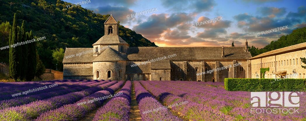 Stock Photo: The 12th century Romanesque Cistercian Abbey of Notre Dame of Senanque ( 1148 ) set amongst the flowering lavender fields of Provence near Gordes, France.