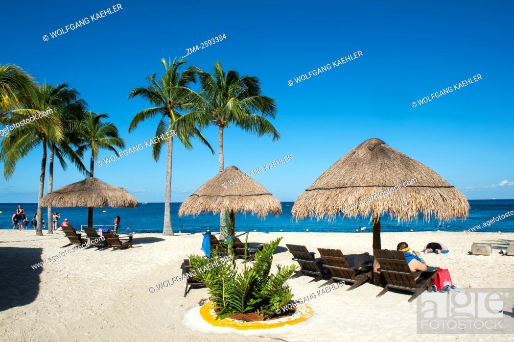 Stock Photo: View of the beach with coconut palm trees and palapas at Cozumel Chankanaab National Park on Cozumel Island near Cancun in the state of Quintana Roo.