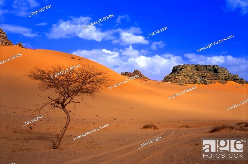 Imagen: afrique, sahara, libye : désert sud-ouest.