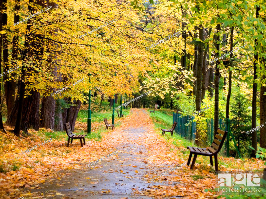 Stock Photo: Park in Szczawnica,, Poland.