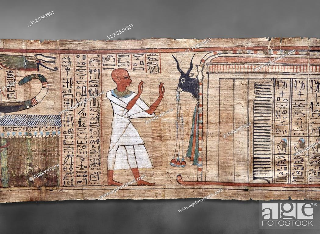 Imagen: Ancient Egyptian Book of the Dead papyrus - Aaner Book of the Dead, Thebes - 21st Dynasty (1076-943C). Turin Egyptian Museum. Grey Background.