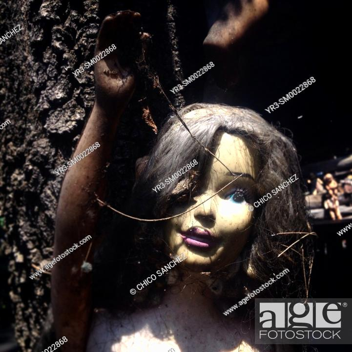 Stock Photo: A doll is displayed in the Island of the Dolls, Xochimilco, Mexico City, Mexico.