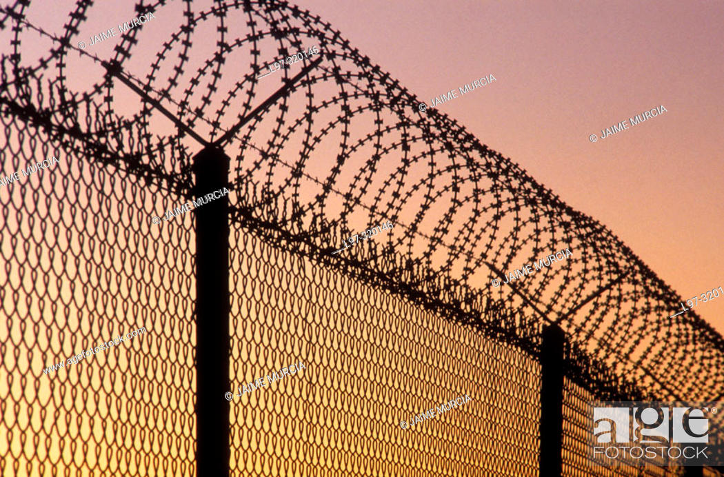 Stock Photo: Razor wire security fence.