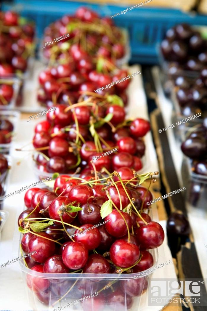 Stock Photo: Freshly picked cherries at an open air market.