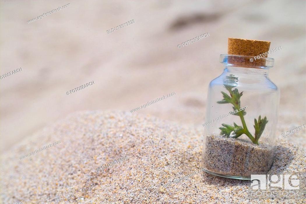 Photo de stock: beach, glassbottle, landscape, scenery, sand, shore, bottle.