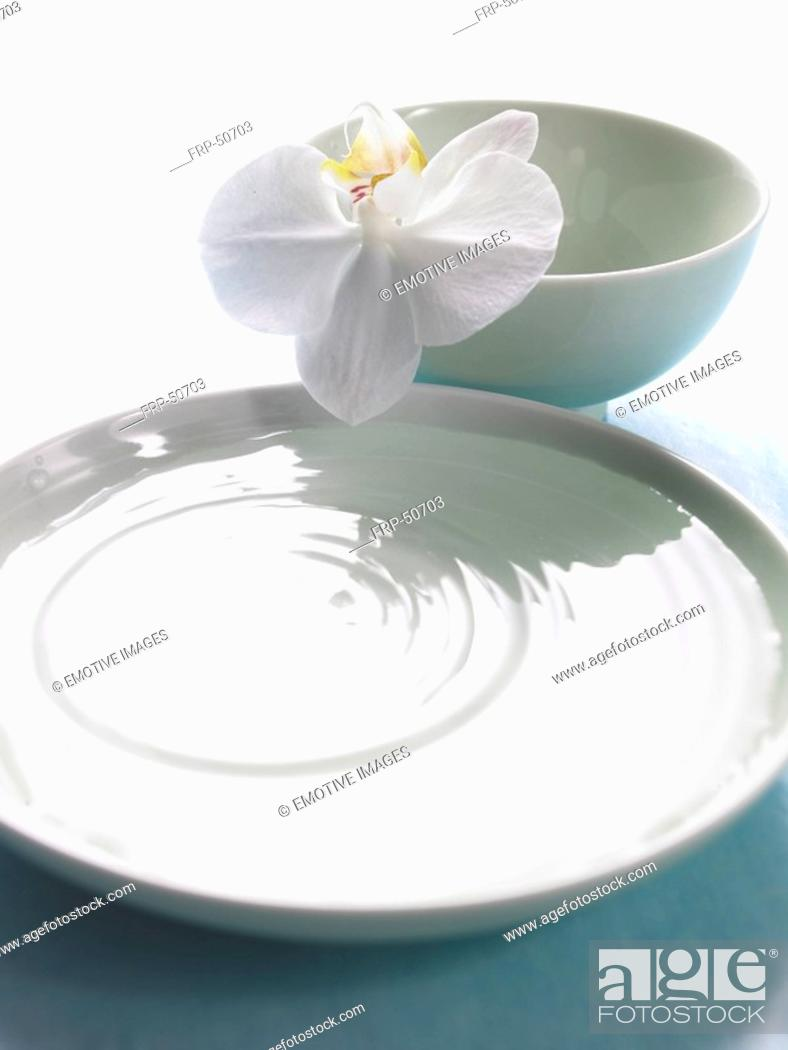 Stock Photo: Arrangement of a bowl filled with water and a orchid blossom.