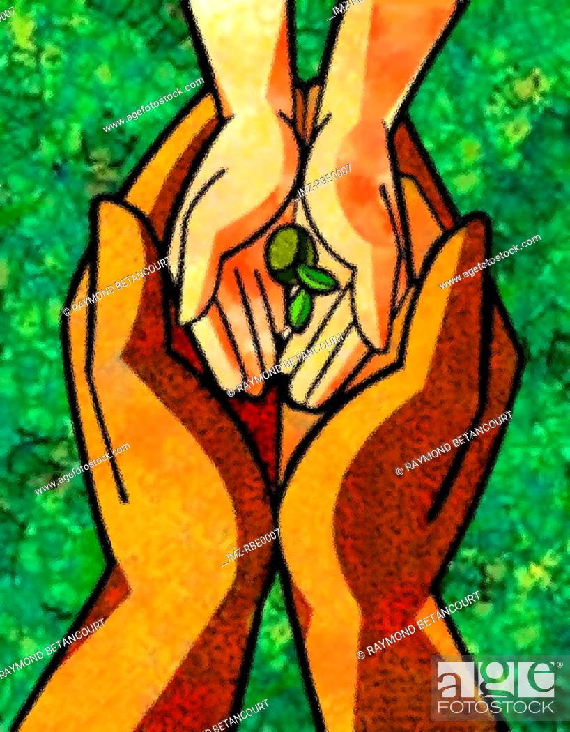 Stock Photo: hands holding a small seedling.