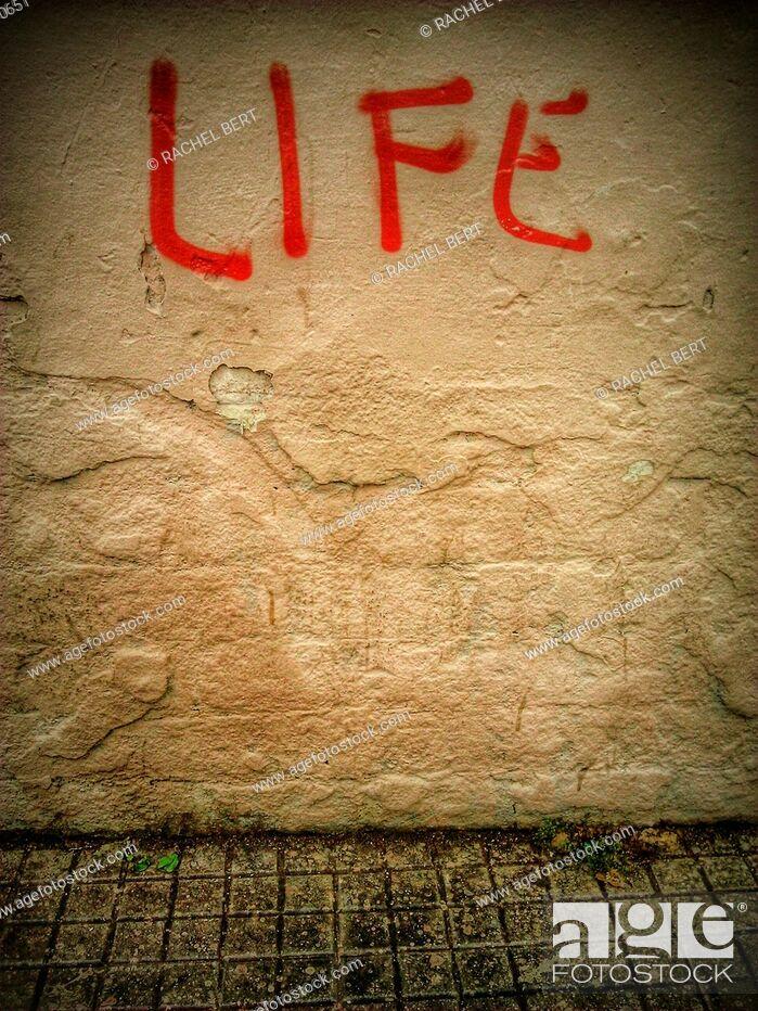 Stock Photo: Life.