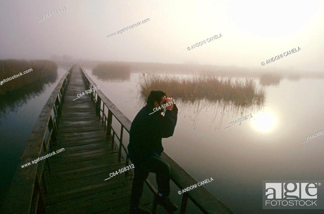 Stock Photo: Birdwatcher. Birdwatching. Tablas de Daimiel National Park. Ciudad Real province. Castilla-La Mancha. Spain.